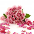 Petals and pink rose — Stock Photo