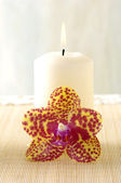 Orchid and candle — Stock Photo