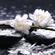 Black stones and flower - Stock Photo