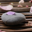Zen stone with petal — Stock Photo