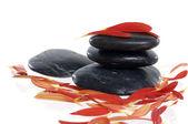 Stein und roten Blüten — Stockfoto