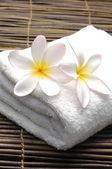 Frangipani flowers and towel — Stock Photo