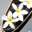 Still life frangipani flower — Stock Photo
