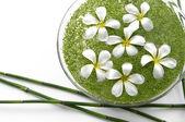 Bowl of white frangipani — Stock Photo