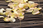 Pile of rose petals — Stock Photo