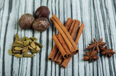 Cinnamon sticks, star anise, cardamom and nutmeg — Stock Photo