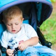 Little boy in a stroller in the park with a toy — Stok fotoğraf