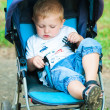 Stock Photo: Little boy in pram on walk in park
