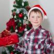 Little boy in santa hat near Christmas tree — Stock Photo #36803861