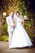 Young and beautiful bride and groom — Stock Photo