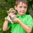 Little boy with a rabbit in his hands — Stock Photo