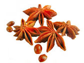 Star anise. — Stock Photo