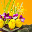 Easter Decoration — Stock Photo #22497283