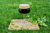 Dark beer with hops on grass — Stock Photo