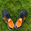 Stock Photo: Sneakers on grass with heart