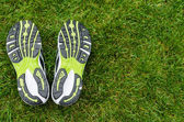 Sneakers soles on grass — Stock Photo