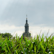 Abbey church in the cornfield — Stock Photo
