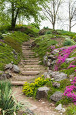 Stone stairs in the park surrounded by flowers — Stock Photo