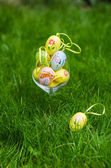 Painted easter eggs in glass on green grass — Stock Photo