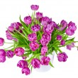 Bouquet of pink tulips in flowerpot isolated on white — Stock Photo #51348681
