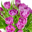 Bouquet of pink tulips in flowerpot isolated on white — Stock Photo #51348701