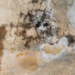 Stock Photo: Inked Brown Grunge Wall Texture