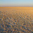 The dry Makgadikgadi Pan near Nata in North East Botswana, Southern Africa — Stock Photo