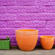Four pots — Stock Photo #22096801