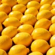 Fresh citrus background - Stock Photo