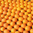 Fresh citrus background — Stock Photo