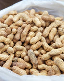 Bags of unshelled peanuts from the market — Stockfoto