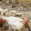 The old ruins of the city of Ephesus in modern day Turkey — Stock Photo #22103267