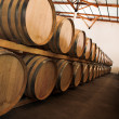 Stock Photo: Oak barrels