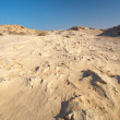 An eroded sandstone beach on the edge of the desert — Stock Photo