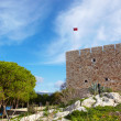 Main entry of the Pigeon Island Fortress - Foto Stock