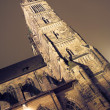 Building at nighttime in Neurenburg - St Lorenz Cathedral — Stock Photo #22113635
