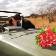 Stock Photo: Red bouquet of roses on bonnet of car, just married bridal couple kissing in background