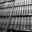 Stock Photo: Legal Library in wooden bookcase