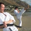 Young adult men with black belt practicing a Kata — 图库照片