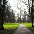 Kensington Gardens - Early morning — Stock Photo #22119999