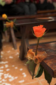 Single flower decorations on the seats at a wedding ceremony — Stock Photo
