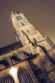 Building at nighttime in Neurenburg - St Lorenz Cathedral — Stock Photo