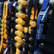 Dive belts with weights hanging out to dry — Stock Photo