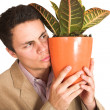 Foto Stock: Businessman holding a pot plant
