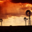 Brewing thunderstorm in the dessert area of the Karoo in South Africa just before sunset. — Stock Photo #22128885