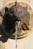 Lion head fountain in Aix-en-Provence, France — Stock Photo