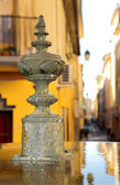 One fo the Famous fountains of Aix-en-Provence, France — Stock Photo