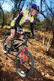 Panning shot of a mountain biker, racing in a forest. — Stock Photo