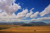 Farming fields with mountains in the background — Stok fotoğraf