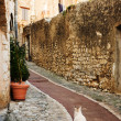 Stock Photo: White cat sitting in alleyway in quaint little French hilltop village of Saint-Paul de Vence, Southern France,